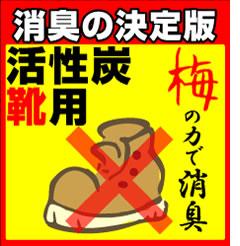 靴用 梅種活性炭